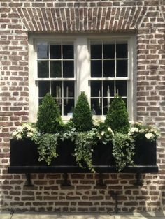 If you want to make the most out of your window box, you need to design it properly. Need ideas to style your window box? Check out our 17 list window box ideas Garden Windows, Balcony Garden, Garden Planters, Box Garden, Garden Ideas, Fall Planters, House Windows, Evergreen Planters, Boxwood Planters