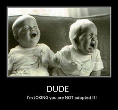 pinterest humor | You've seen or heard this type of adoption humor before. It's a ...