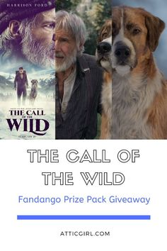 "The Call of the Wild is one of my favorite classic books by Jack London.  The writer was incredibly gifted in painting a picture with his words.  While the book is usually better than the movie, I am eagerly anticipating the new film adaptation from Twentieth Century Studios, ""The Call of the Wild,"" starring Harrison Ford. #sponsored #CalloftheWild #CalloftheWildMovie #AnswertheCall #Giveaway #Books #Movies #Entertainment #Fandango"