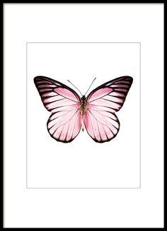 Poster mit rosa Schmetterling auf weißem Hintergrund. Das Poster passt ausgezeichnet zu unseren anderen kleineren Postern mit Schmetterlingen und Insekten. Dieses süße Schmetterlingsposter lässt sich gut mit anderen Postern in ähnlichen rosaroten Farbtönen oder mit Typografie-Postern mit schönen Botschaften kombinieren. www.desenio.de