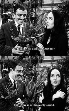 Most Heavenly Sound The Addams Family. The Most Heavenly Sound - 1964 PhotoThe Addams Family. The Most Heavenly Sound - 1964 Photo Addams Family Quotes, The Addams Family 1964, Die Addams Family, Addams Family Values, Dark Beauty, Rock Roll, Gomez And Morticia, Charles Addams, The Addams Family