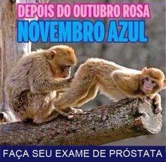 imagens-engracadas-whatsapp-depois-do-outubro-rosa-novembro-azul-faca-seu-exame-de-prostata