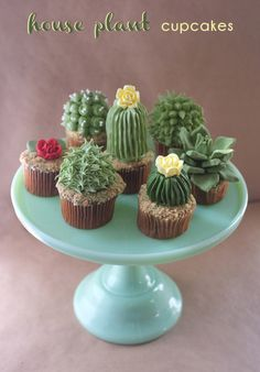 DIY: House Plant Cupcakes