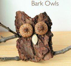 Nature craft ideas for kids, preschoolers, kindergarten, and adults. Fun and easy camp activities. Nature projects for kids to make for Halloween, Thanksgiving, Christmas, summer, fall, winter. Nature art.