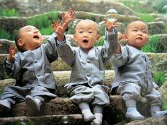 Novice Monks(Korea)