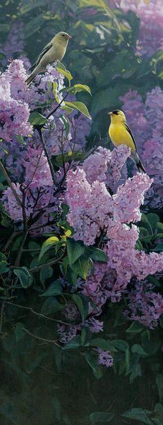 Garden Gold by Terry Isaac