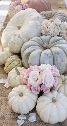 The colors and textures of this centerpiece are absolutely stunning! Adding the fresh flowers really takes the entire setting to a whole new level! From FRENCH COUNTRY COTTAGE: Simple Autumn Centerpiece White Pumpkins, Fall Pumpkins, Thanksgiving Decorations, Seasonal Decor, Fall Decorations, Thanksgiving Tablescapes, Diy Decoration, Shabby Chic Fall, Fall Wedding Centerpieces