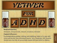 Vetiver Young Living Essential Oils For Kids, Therapeutic Grade Essential Oils, Young Living Essential Oils, Young Living Adhd, Young Living Oils, Vetiver Young Living, Vetiver Oil, New Things To Try, Yl Oils