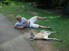 As coisas são um pouco diferentes na Austrália | O TRECO CERTO