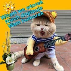 Good Morning Funny, Morning Humor, Animals, Aga, Tuesday, Birthday, Youtube, Funny Animals, Animales