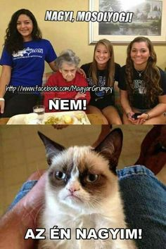 Öröklődő szokások!!!😂😂😂 #Zita #vicc Bad Memes, Funny Cat Memes, Funny Fails, Memes Humor, Hahaha Hahaha, Haha Funny, Funny Cute, Grandma Memes, Friday Humor