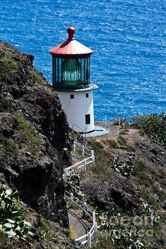 Makapu'u Lighthouse - Oahu, Hawaii--The lens is a hyper-radial, the largest in service in the United States. I had a KFC picnic up here in Hawaii Vacation, Oahu Hawaii, Hawaii Travel, Dream Vacations, The Places Youll Go, Places To See, Lighthouse Pictures, Beacon Of Light, Am Meer