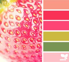 Colors - Melon Berry, Pure Poppy, Raspberry Fizz, Simply Chartreuse, New Leaf, Hibiscus Burst