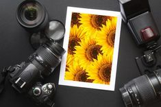 Interested In Photography? Take A Look At This -- To view further for this article, visit the image link.