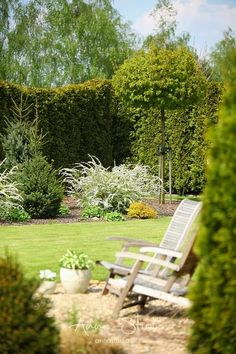 Small garden ideas that are anything but average. All this garden can fit in any type of space. Privacy Fence Landscaping, Deck Garden, Garden Seating Area, Landscape Design, Small Gardens, Outdoor Gardens, English Cottage Garden, Farm Gardens, Beautiful Gardens