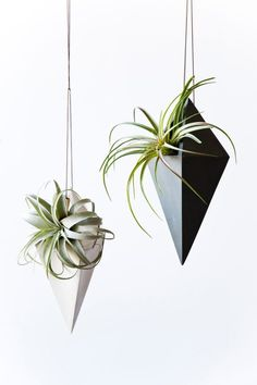 The Best Hanging Planters — The Guide 2018