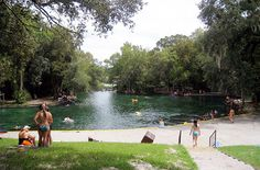 Website that states 40 free activities to do in the Orlando, FL area