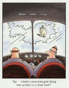 """what's a mountain goat doing way up here in a cloud bank?"""" (Gary Larson, The Far Side) Far Side Cartoons, Far Side Comics, Funny Cartoons, Funny Comics, Funny Jokes, Funny Sarcasm, It's Funny, Political Cartoons, Gary Larson Cartoons"""