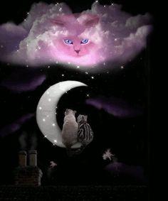 Black Cat ~ how beautiful is this? Description from pinteres… – Miracles from Nature Image Jesus, Good Night Gif, Good Night Sweet Dreams, Moon Magic, Beautiful Moon, Rainbow Bridge, Moon Art, Happy Fall, Cat Art