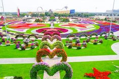 Desert miracle - World's largest natural flower garden opens in Dubai The Dubai Miracle Garden has more than 45 million flowers. But the real miracle is that it was built at all. (Seriously, is there anything Dubai doesn't have? Hotel A Dubai, In Dubai, Dubai Uae, Dubai Trip, Dubai Desert, Dubai City, Most Beautiful Gardens, Beautiful Places, Big Flowers