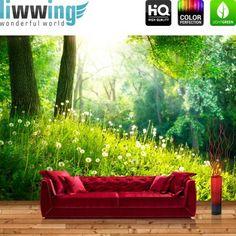 Vlies Fototapete PREMIUM 400x280cm SUNNY FOREST by liwwing (R) | Vliestapete, Tapete, Wiese, Bäume, Wald, Sonne, Baum, Birke, Birken, Gras, ...