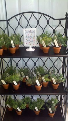 """It's almost Thyme"" party favors! Punny and useful baby shower take-aways. :-)"
