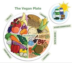 The Vegan Plate food guide from Becoming Vegan: Express Edition and Becoming Vegan: Comprehensive Edition by dietititans Brenda Davis and Vesanto Melina (Book Publishing Co. 2013, 2014)
