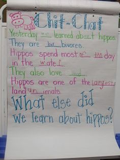 We are working on our zoo unit. The kids are having fun learning about the special characteristics of zoo animals and where they are from. Kindergarten Units, Kindergarten Reading, 3rd Grade Classroom, Classroom Themes, Hippo Facts, School Themes, School Ideas, Teacher Hacks, Teacher Stuff