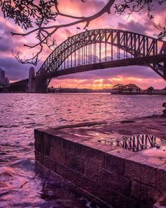 INSTAGRAM OF THE DAY: End your day with a classic Sydney fairy floss sunset 🌅 Pack a picnic and head to Milsons Points to watch this beauty over the Sydney Harbour Bridge! #ilovesydney 📷 IG/ @drruthcollins