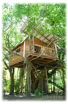 1000 images about treehouses on pinterest costa rica for Costa rica tree house rental