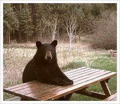 esperando o almoço