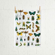 INSECTS TEA TOWEL  - MULTICOLOUR