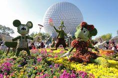 One of the world's biggest Flower & Garden show.the Epcot Flower & Garden show Epcot, Disney Fun, Disney Trips, Walt Disney, Disney Travel, Orlando Activities, Flower Festival, Festival Party, Wine Festival