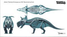 pachyrhinosaurus - Buscar con Google