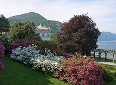 I Giardini Di Villa Melzi, Bellagio Como
