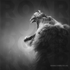 They will follow the LORD; he will roar like a lion. When he roars, his children will come trembling from the west. Hosea 11:10  Visit www.MorningStarMinistries.org.