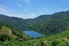 Río Miño a su paso por la Ribeira Sacra