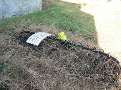 The local legend is that Sarah was a witch and that the cage was put over her grave to stop her from rising! The grave is in the north side of the churchyard and that was traditionally the area set aside for suicides and wrongdoers. But would a witch be buried in consecrated ground?