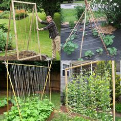 15 easy attractive DIY cucumber trellis ideas on how to build vertical garden growing structures with simple materials for productive vegetable gardening! - A Piece of Rainbow backyard, landscaping, gardening tips, homesteading grow your own food Veg Garden, Vegetable Garden Design, Garden Trellis, Garden Pots, Vegetable Gardening, Gardening Tips, Diy Trellis, Garden Shrubs, Potager Bio