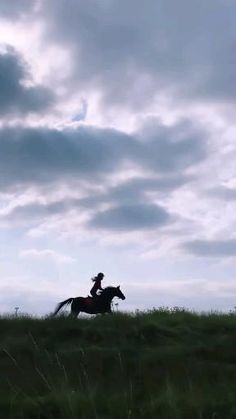 Dubai Video, I Love Rain, Beautiful Places, Horses, Mountains, Sweet, Nature, Travel, Hs Sports