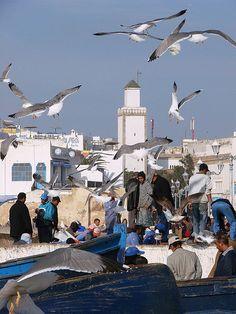 Essaoira, Morocco [by daniel virella]  For cultural trips to Morocco: www.asilahventures.com