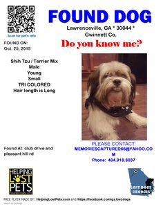 Found Dog - Shih Tzu - Lawrenceville, GA, United States