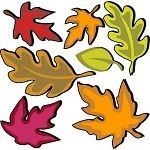 Kindergarten Harvest Lesson Plans: Leaves - This is a 5-part series of lesson plans. Learning with The Lonely Scarecrow Go to Sleep, Bear! Lesson Plan on the Every Autumn Comes the Bear Book Fall Trees: All About a Tree in Fall Leaves, Leaves, and More Leaves! Celebrate Autumn With Apple Lesson Plans For Preschool