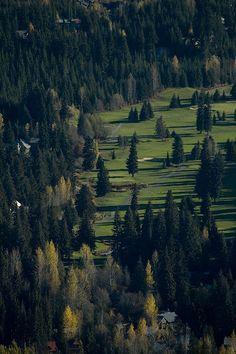 whistler golf course www.facebook.com/letsflee