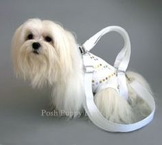 Anjolie Puppy Purse Carrier - Carriers - Puppy Purse Carriers Posh Puppy Boutique