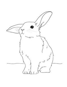 Bunny Easter Coloring Page: