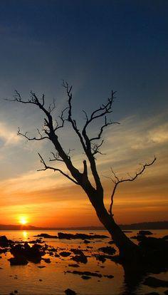 Sunset, Andaman and Nicobar Islands by Mangalika