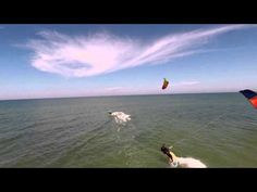 ▶ AirDog.com is now on Kickstarter! Watch the video and click on link below - YouTube