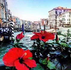LoL. Amazing viwe from The Hotel Centurion Palace | Grand Canal | Venice