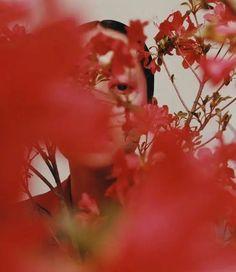 Le marché chinois de la mode est en plein essor : Tendances et consommateurs Film Photography, Creative Photography, Editorial Photography, Fashion Photography, Kreative Portraits, Wow Photo, Photographie Portrait Inspiration, Red Aesthetic, Mood